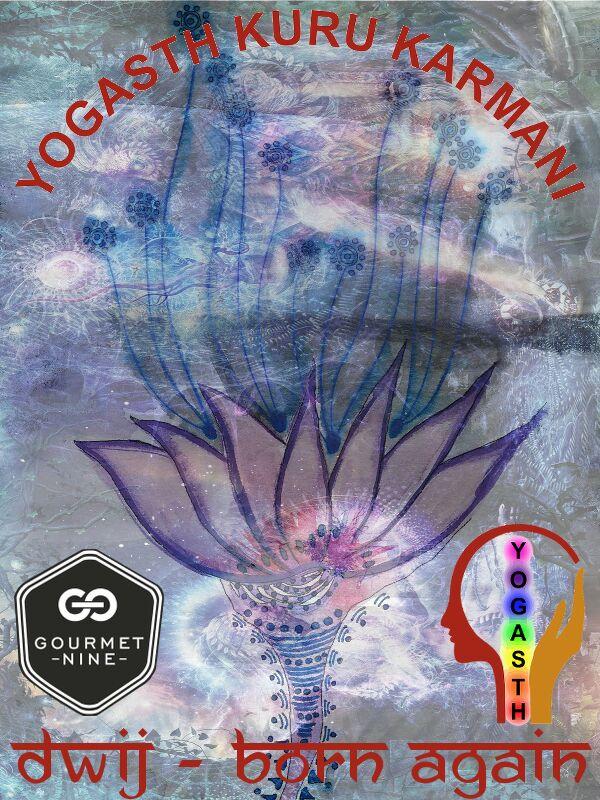 Gourmet 9 Front